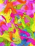 Federn (eine Packung mit leuchtenden Farben)