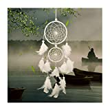 Dsaren Traumfänger Handgefertigt, Feder Dreamcatcher Wandbehang Ornament für Baby Shower Car Hochzeit Home Decor Geschenk (Weiß)