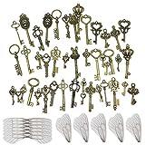 Nsiwem Retro Schlüssel Antiken Anhänger 46 Stück Vintage Bronze Skelettschlüssel Bronze Vintage Schmuck Deko mit 50 Stück Weiß Libelle Flügel Charm für DIY Kunst Fertigkeit Herstellung