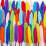 BAKHK 300 Stück Bunte Indianer Federn natürliche Feder zum Basteln Schmucksfedern für Dekoration oder Karneval